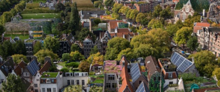 We zien een luchtfoto van een stad met opvallend veel groen en zonnepanelen. Foto: Alice Wielinga (c)